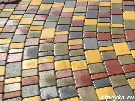 Что-такое-тротуарная-плитка-Описание-виды-производство-и-цена-тротуарной-плитки-14