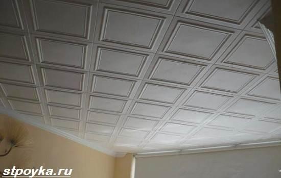 Потолочная-плитка-из-пенопласта-Виды-применение-и-цена-потолочной-плитки-из-пенопласта-1